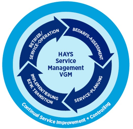 Hays Technology Solutions - Service Management